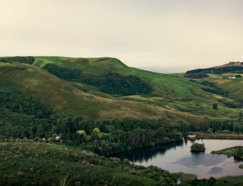 MASTERS OPPORTUNITY: Living Catchments